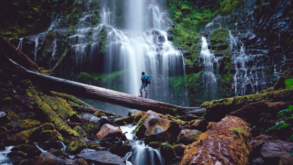 Proxy Falls is one of the best Oregon waterfall hikes.