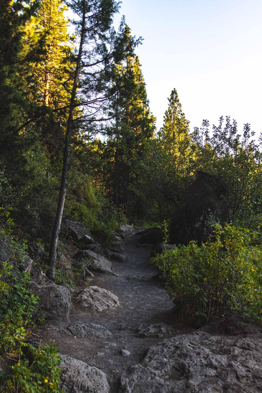 The Deschutes River Trail