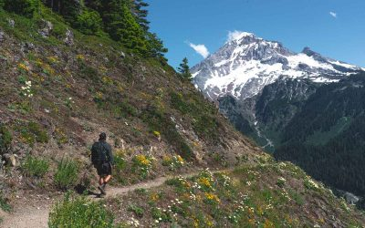 7 Awesome Mount Hood Hikes (Including Waterfall Hikes)