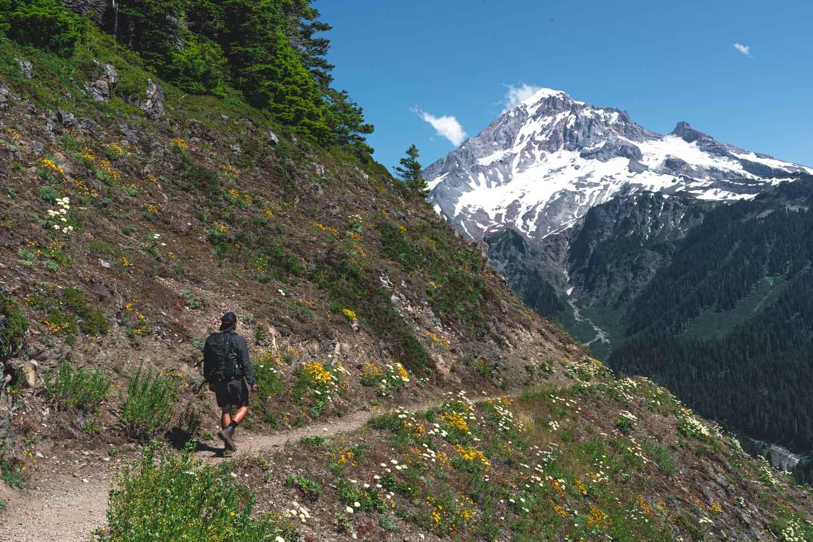 Bald Mountain Hike in Oregon