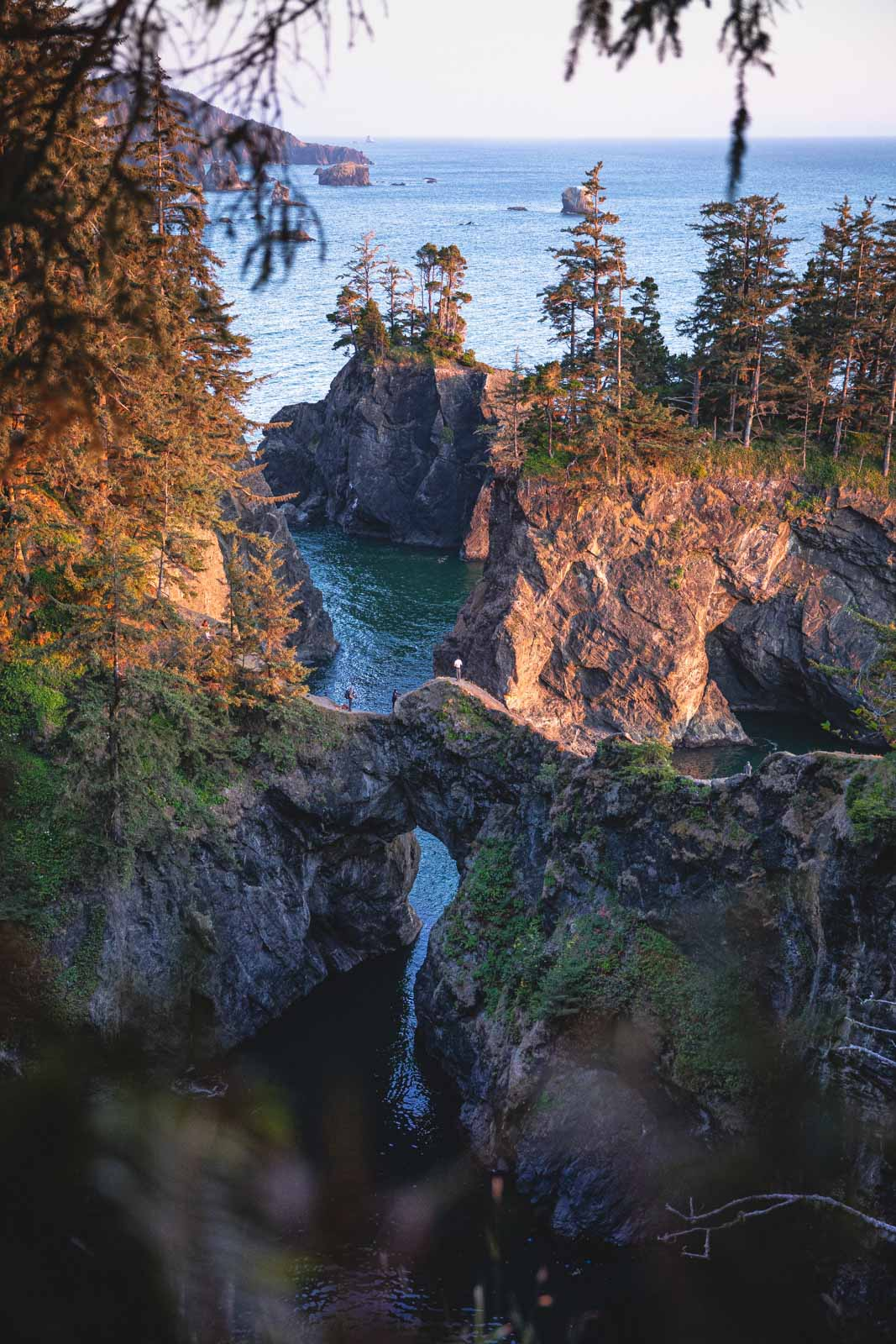 Samuel H. Boardman ― A great stop on your Oregon road trip.