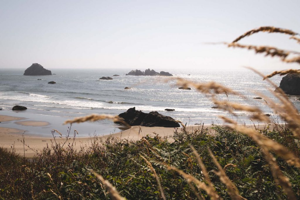 Views on a Oregon Coast Hike