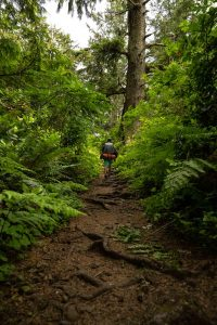 Hiking in the forest on the Oregon Coast