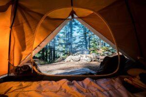 Camping Near Eugene Oregon