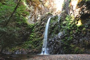 The greatness of Fall Creek Falls in Umpqua National Forest for your Oregon road trip.
