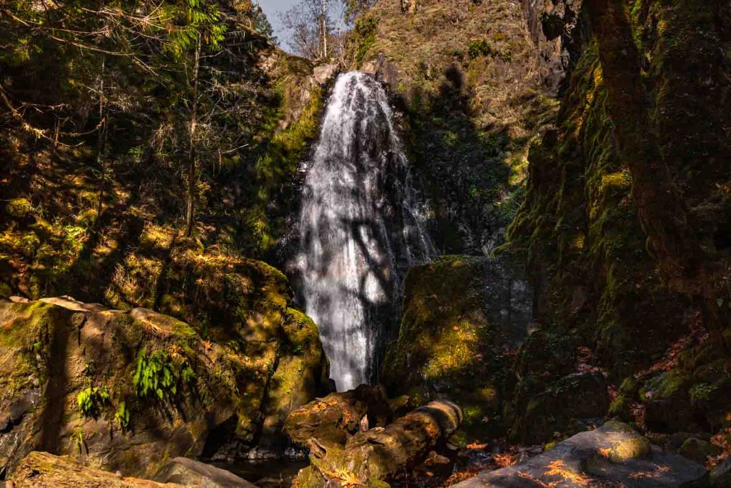 Majestic view of Susan Creek Falls in Umpqua National Forest.