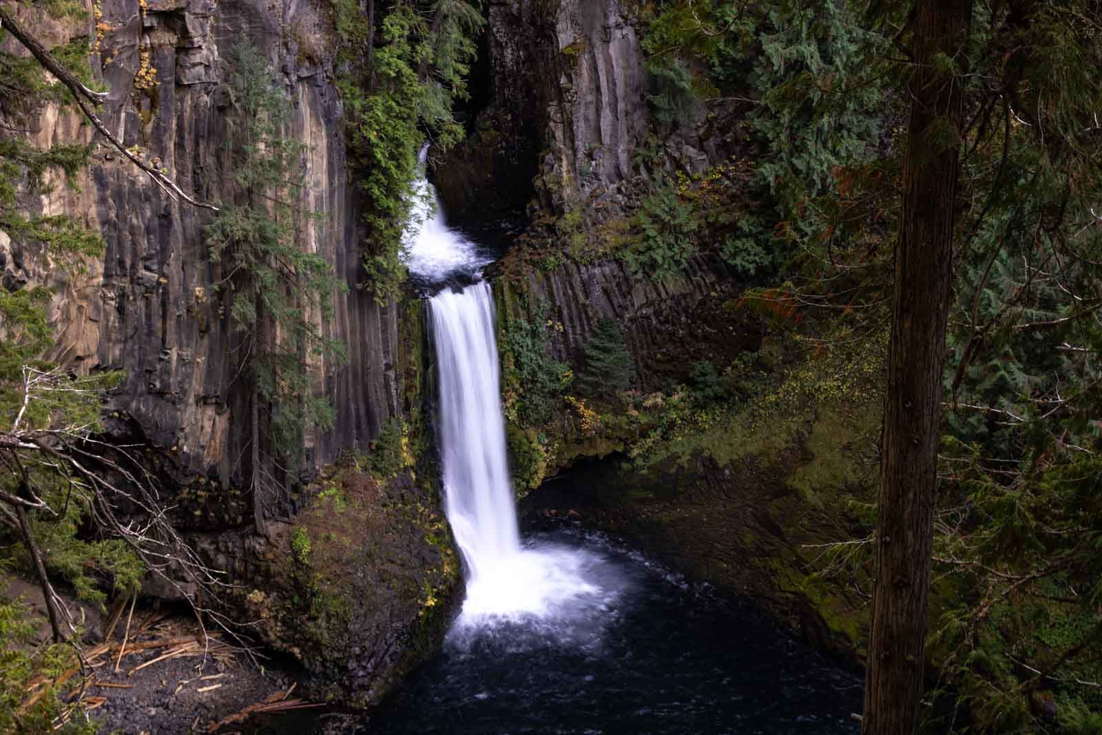 Add Umpqua National Forest to your Oregon itinerary.