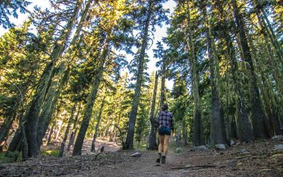 37 of The Best Oregon Hikes You've Got to Check Out