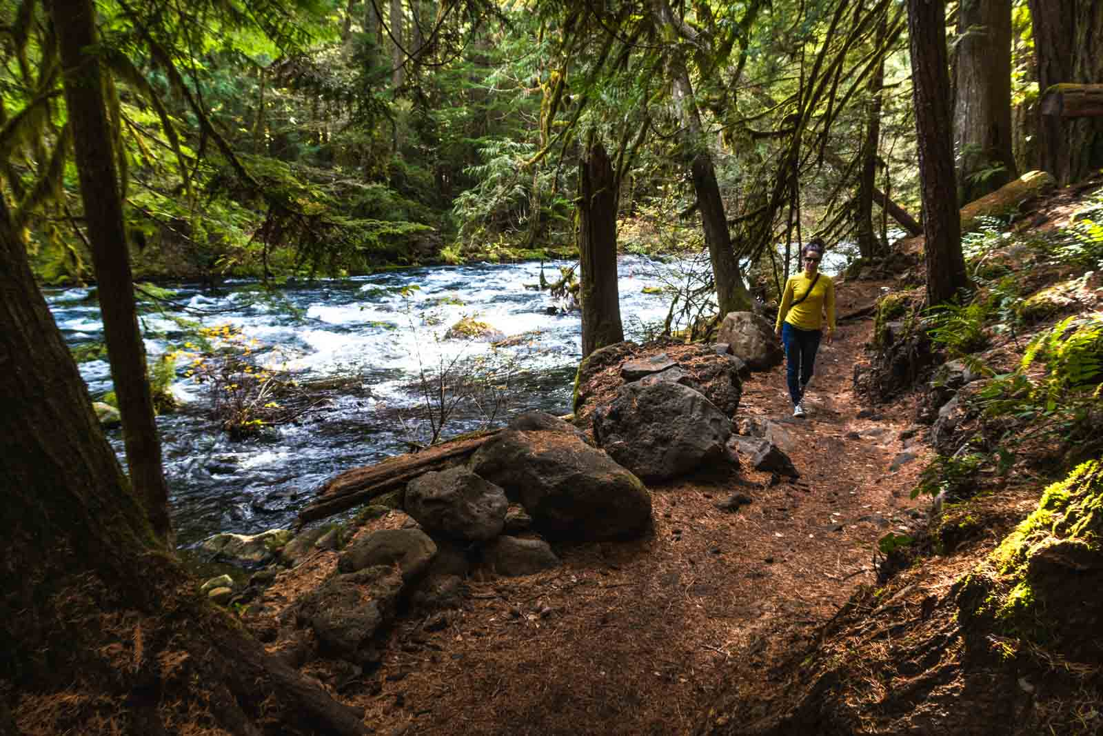 Blue Pool hike trail is a popular things to do in Oregon
