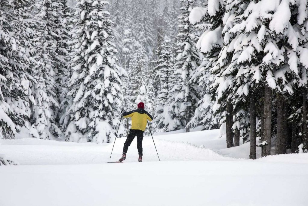Visit Oregon in winter to try cross country skiing