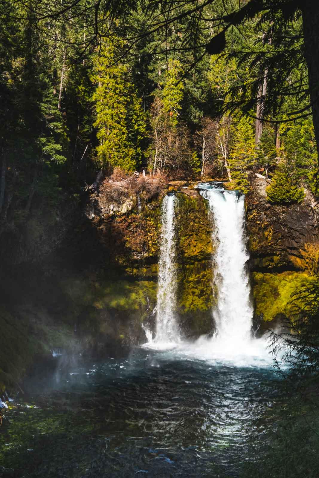 Koosah Falls is an easy Oregon waterfall hike.