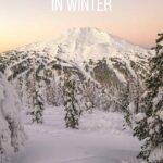 Visit Oregon in Winter