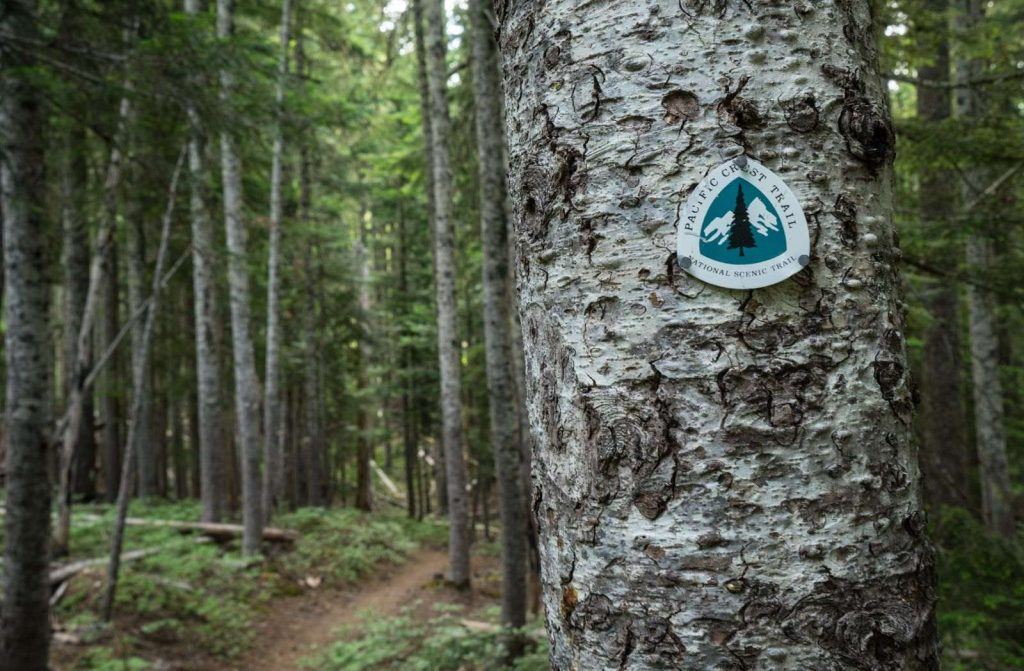 The Pacific Crest Trail in Oregon