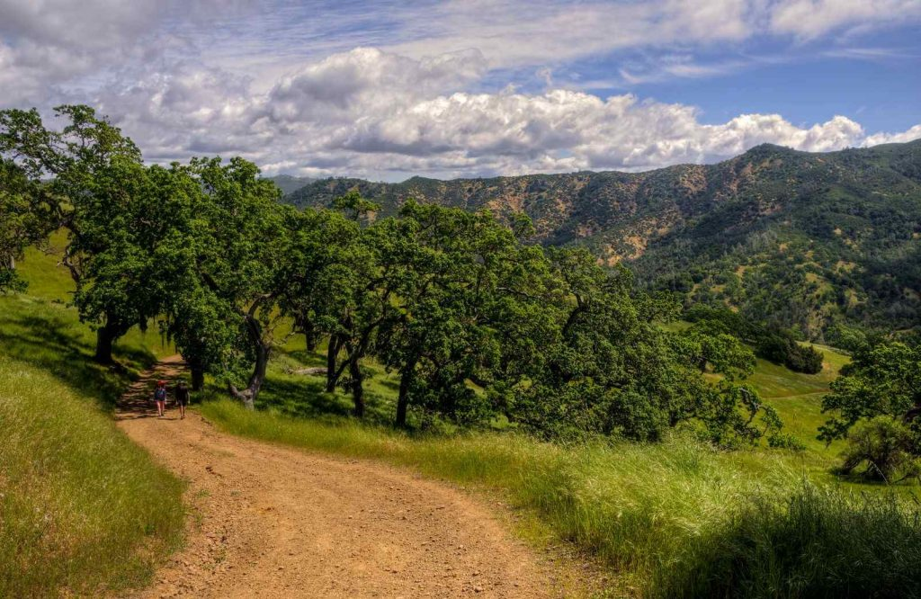 Henry Coe State Park is a great place to visit in Northern California