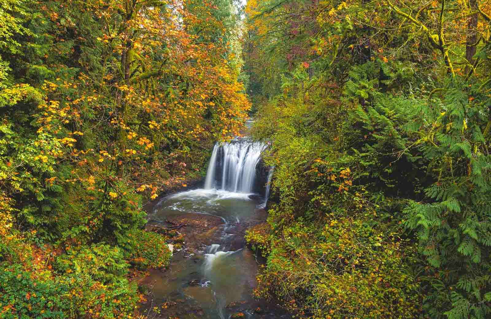 Clackamas Falls is an Oregon waterfall that's especially beautiful during fall.