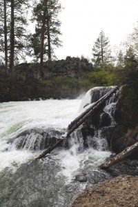 The Deschutes River Trail is a fun thing to do Sunriver.
