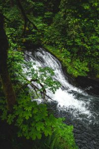 Drake Falls is another gorgeous waterfall on the Silver Falls hike.