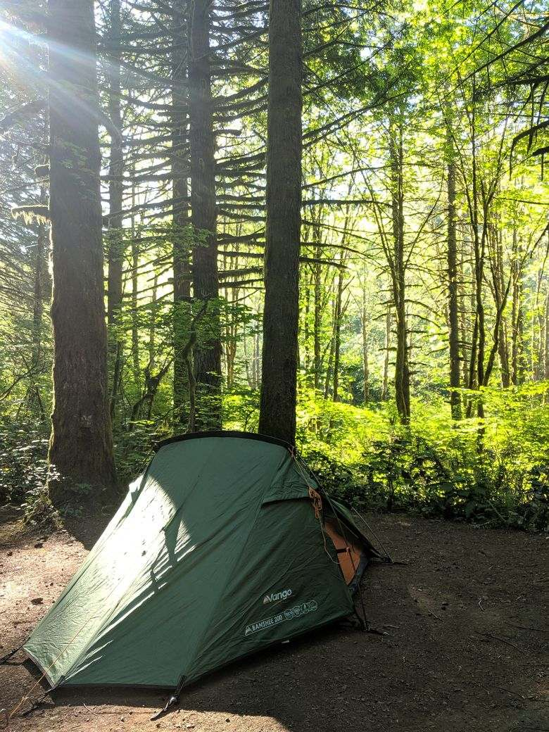 When you go on Tillamook Forest hikes, definitely do some camping!