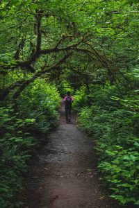 Silver Falls hikes are beautiful and relaxing.