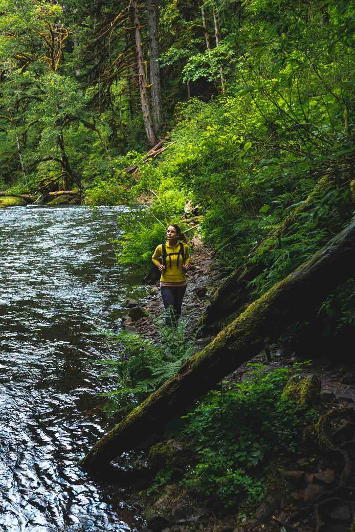 Even though the Abiqua Falls hike is rated difficult, I still had fun.