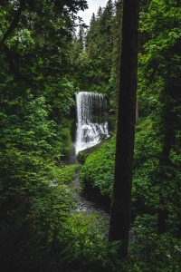 Middle North Falls is one of the most majestic waterfalls in Silver Falls State Park.