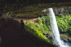 North Falls is a must on your Silver Falls hike.
