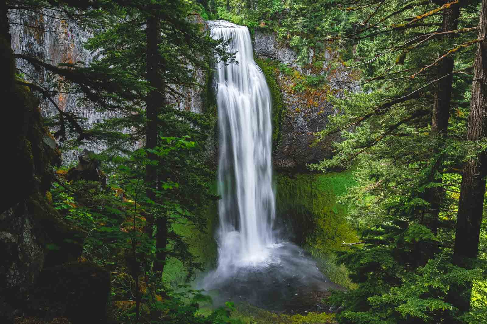If you're looking for impressive waterfalls in Oregon, you won't be disappointed by Salt Creek Falls.