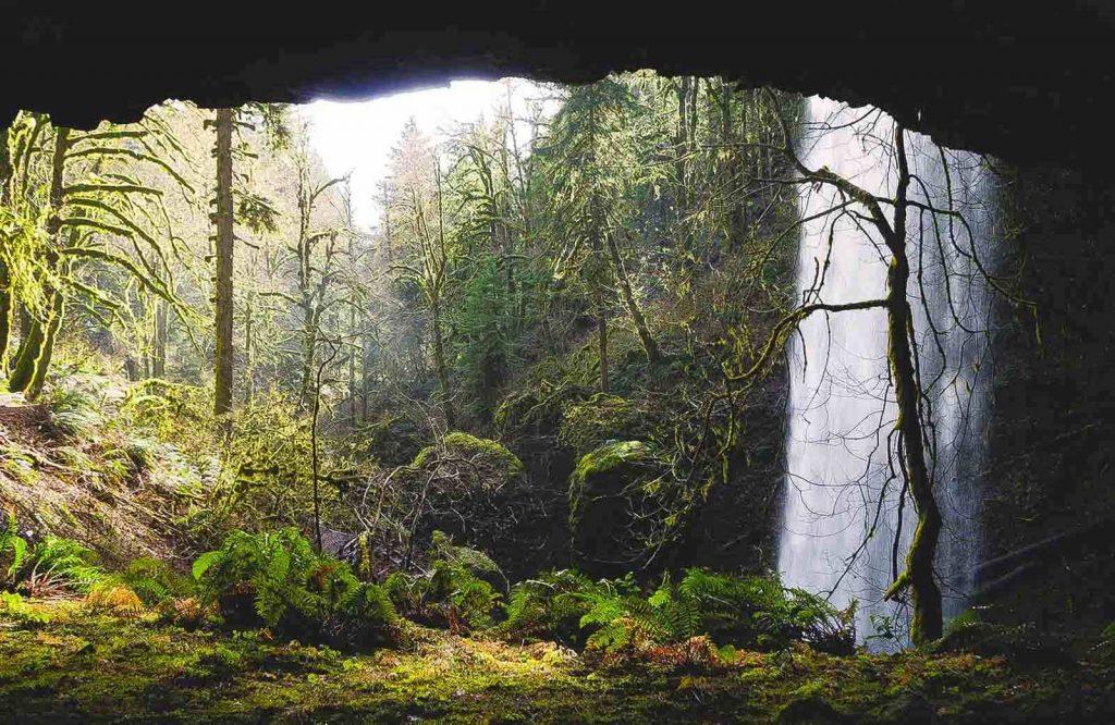 Shellburg Falls is a hidden and beautiful Oregon waterfall.