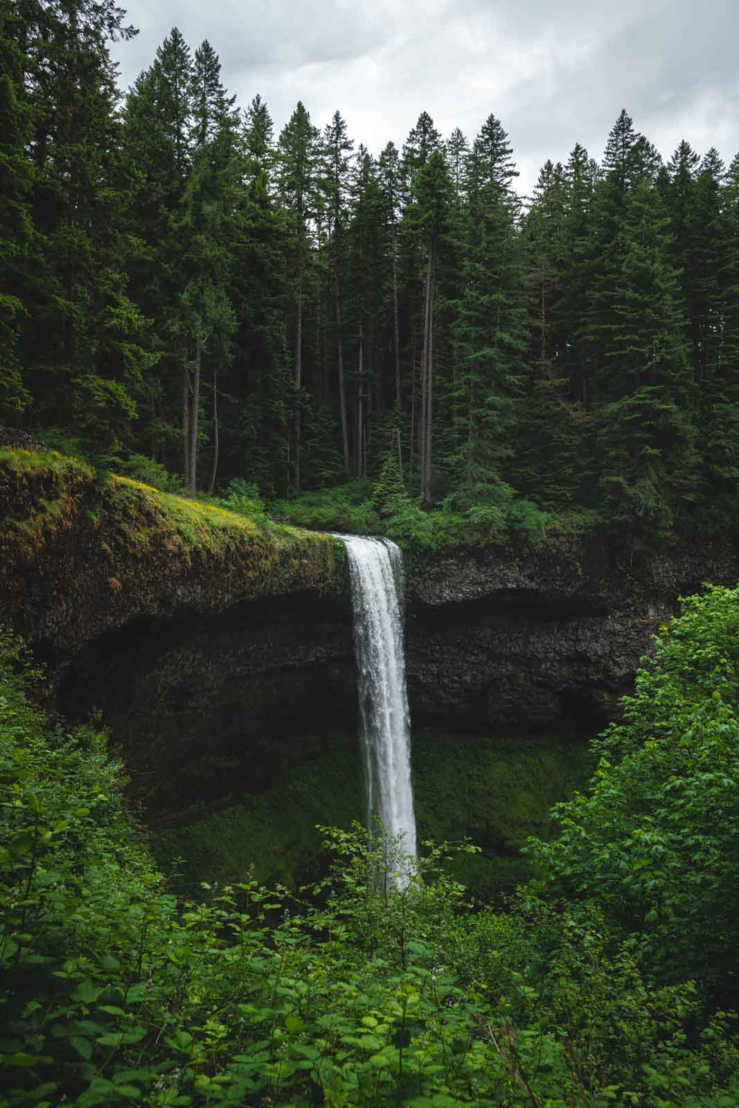South Falls is a must on your Silver Falls hike.