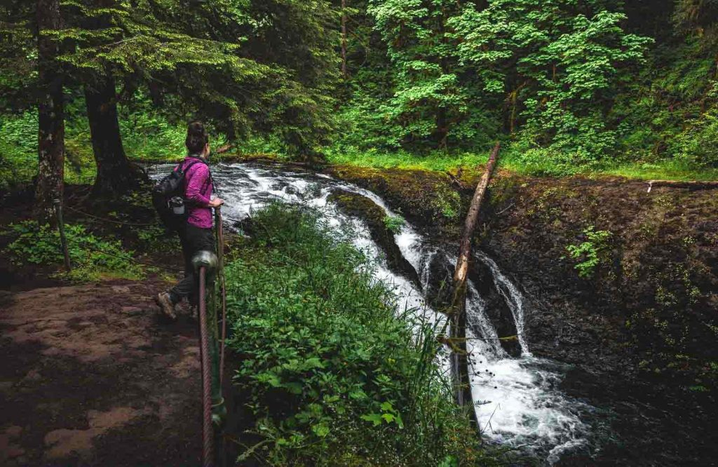 Twin Falls is a smaller yet equally waterfall in Silver Falls State Park.