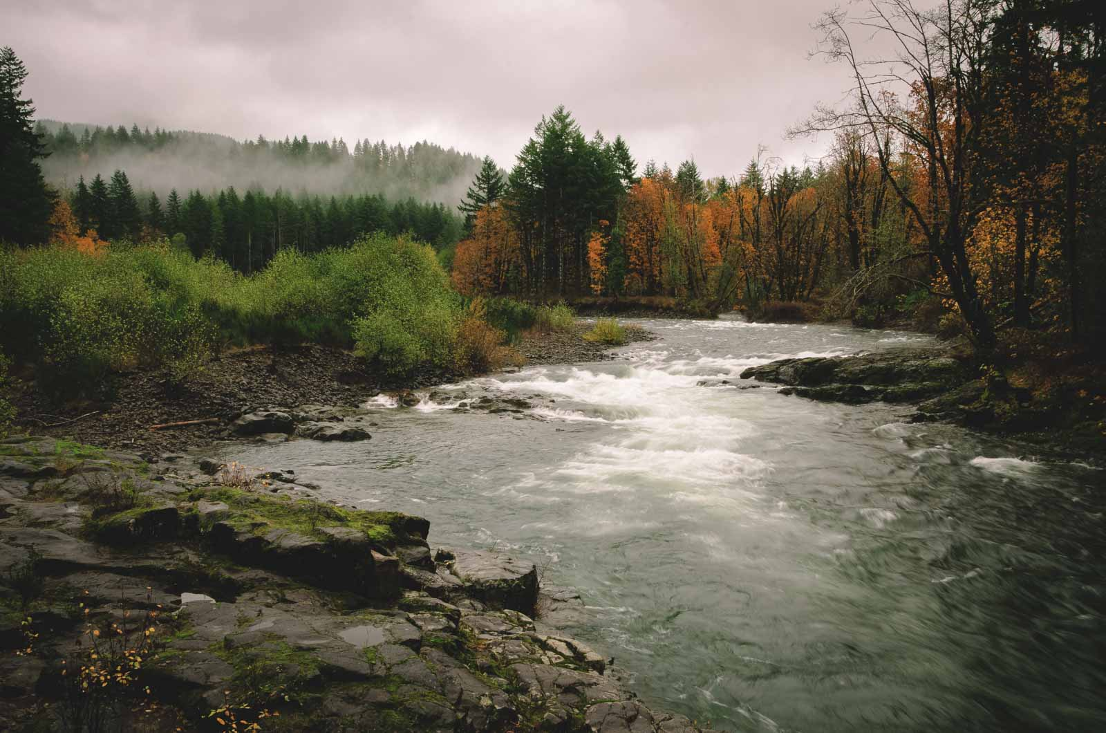 The Wilson River Tillamook hike will take your breath away!