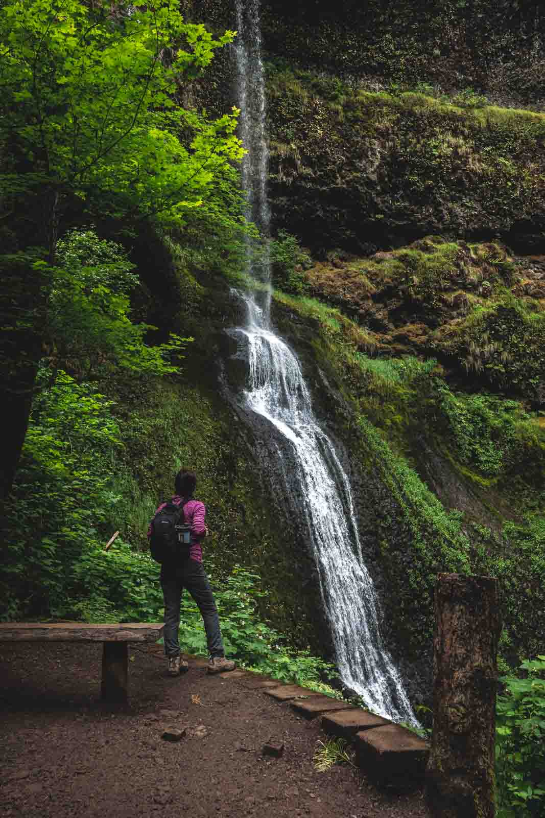 Winter Falls is an impressive waterfall in you'll encounter during your Silver Falls hike.