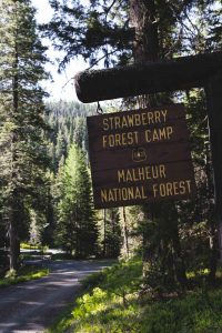 Camping is a fun experience when visiting Strawberry Mountain Wilderness.