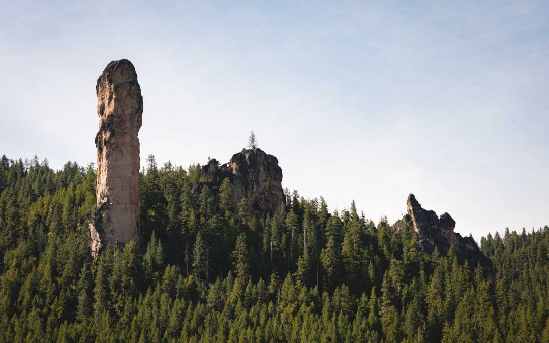 Your Guide to The Ochoco National Forest