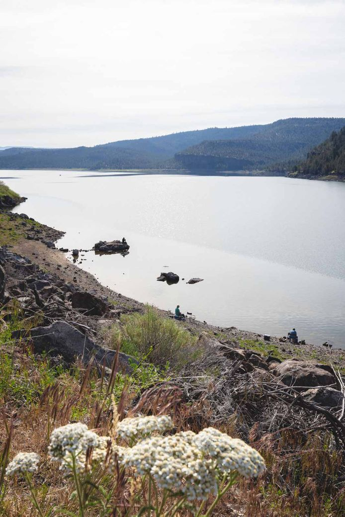 Ochoco Reservoir in Ochoco National Forest offers fun outdoor activities like fishing and kayaking.