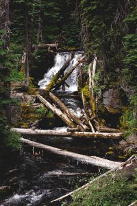 You won't be disappointed by your Tumalo Falls hike!
