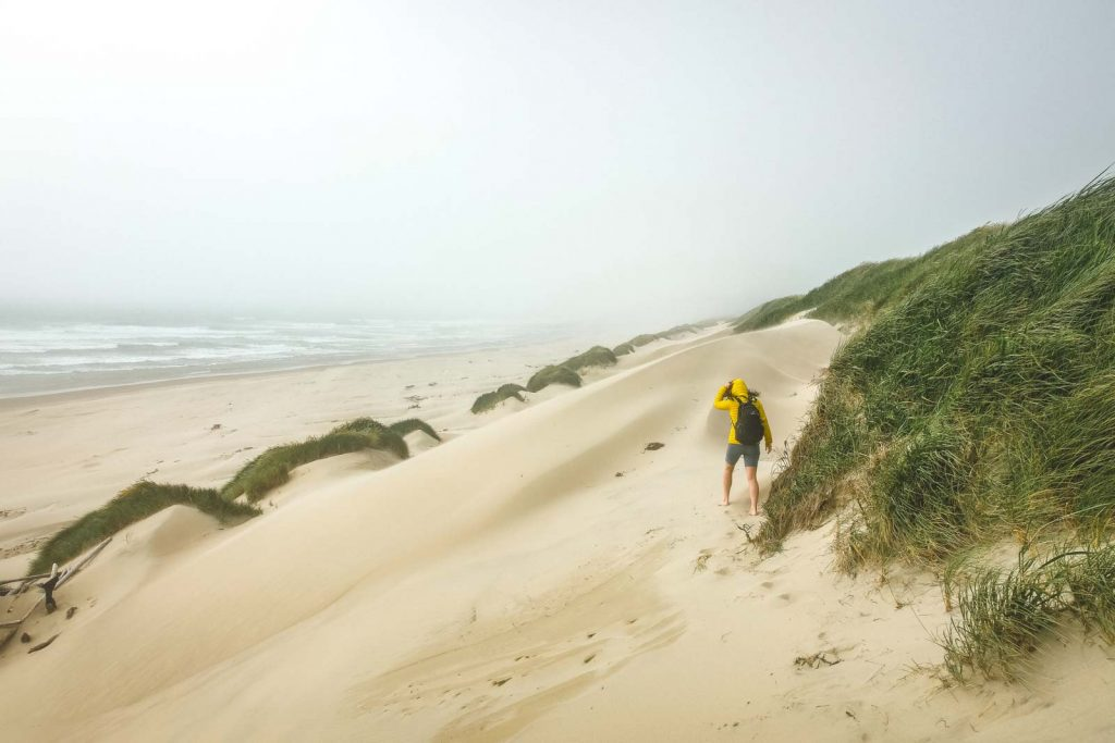 When you're exploring at the Oregon Dunes National Recreation Area, make sure you go to the South Jetty area.
