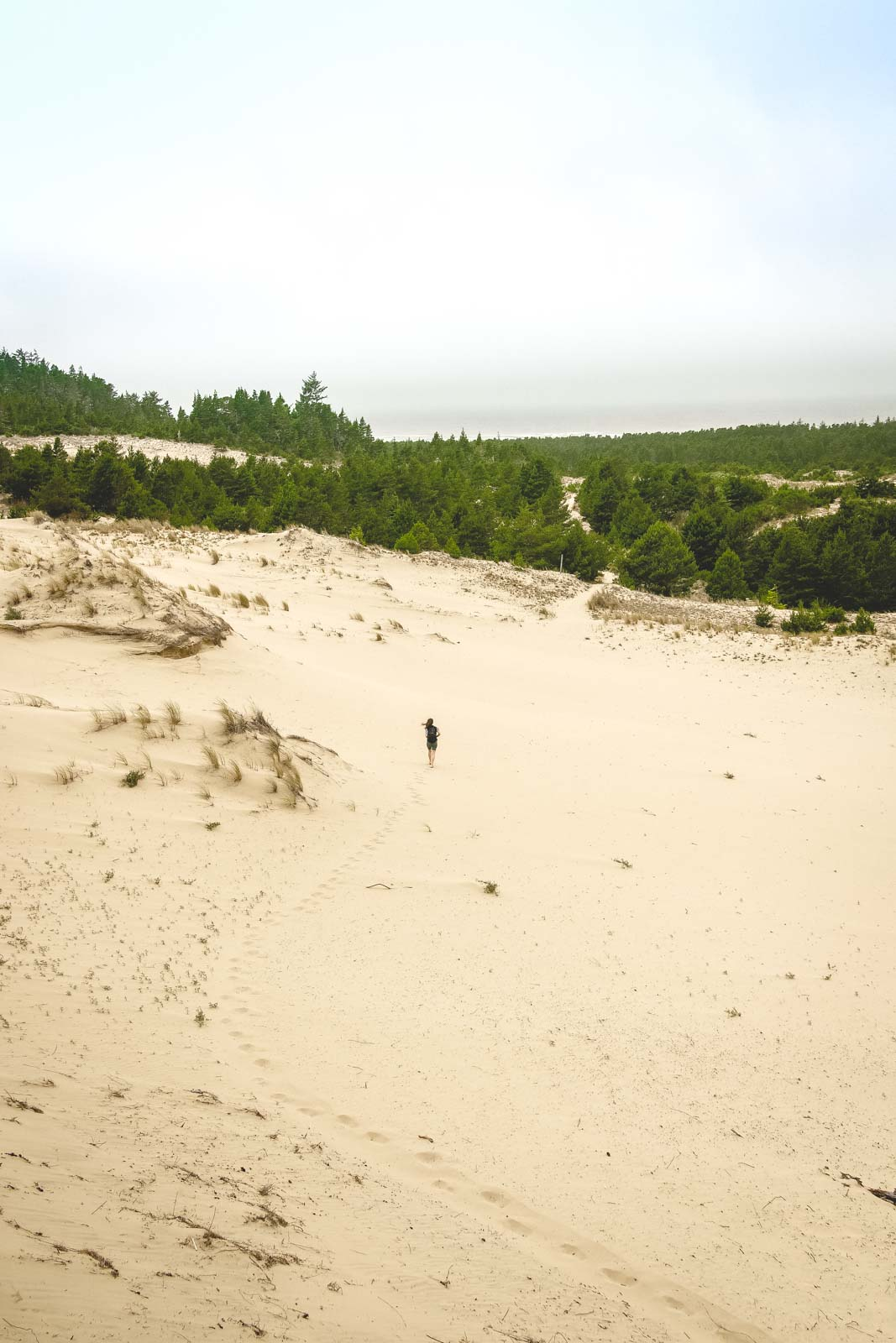 Tahkenitch Dunes Trail is one of many Oregon dunes that has pretty views.
