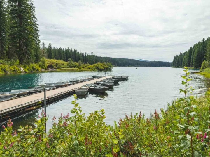 Your Guide to Exploring Clear Lake, Oregon