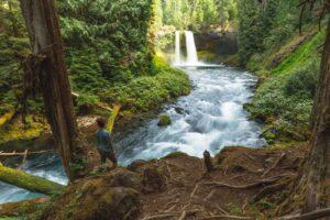 Sahalie Falls and Koosah Falls Trail
