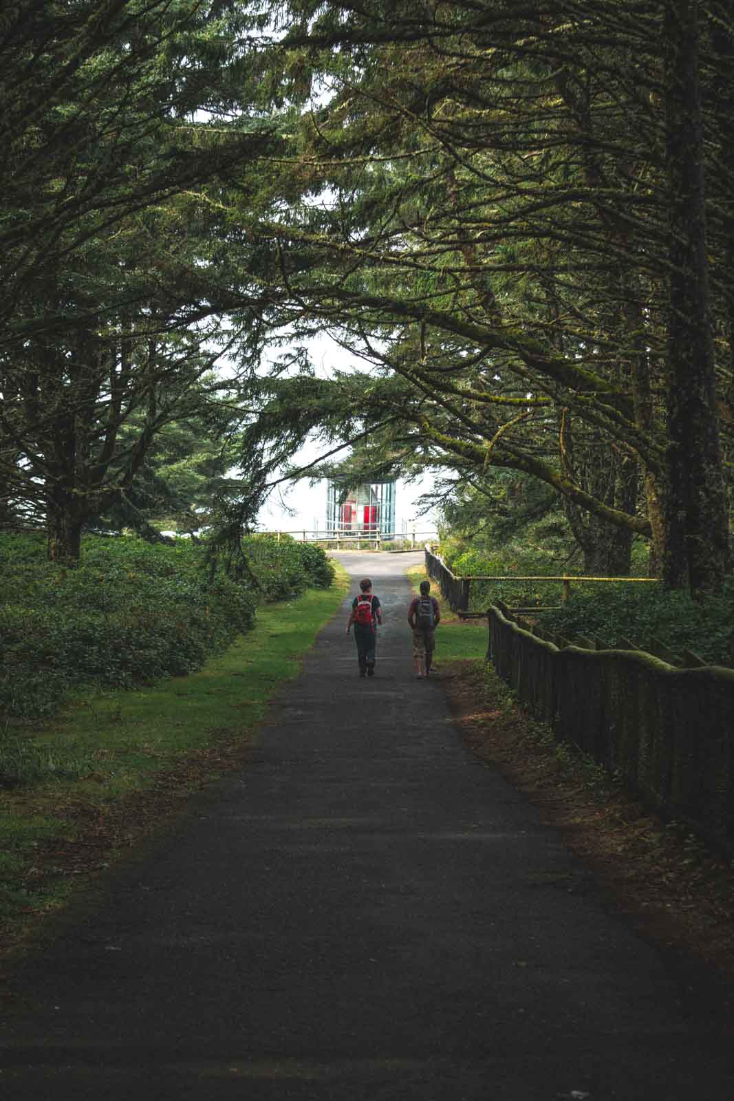 People walking trail to Cape Meares Oregon Lighthouse
