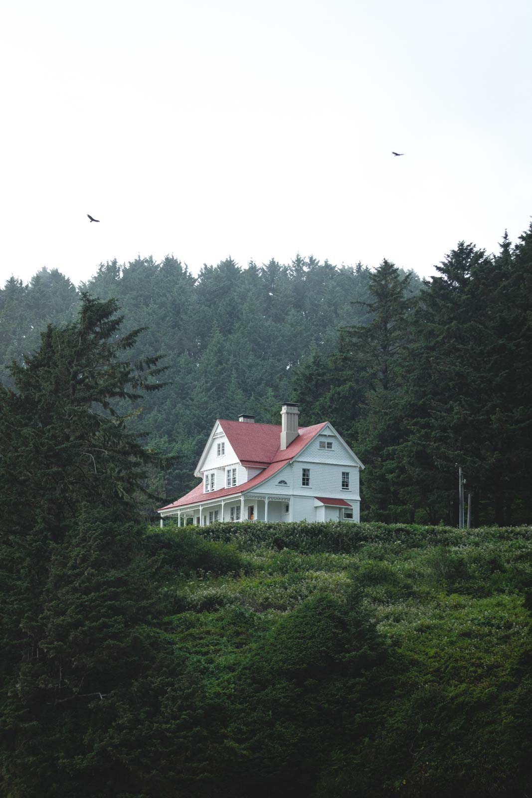 View of Heceta Lighthouse Keeper's House surrounded by trees