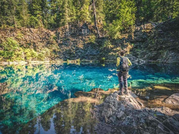 Your Guide To Hiking The McKenzie River Trail