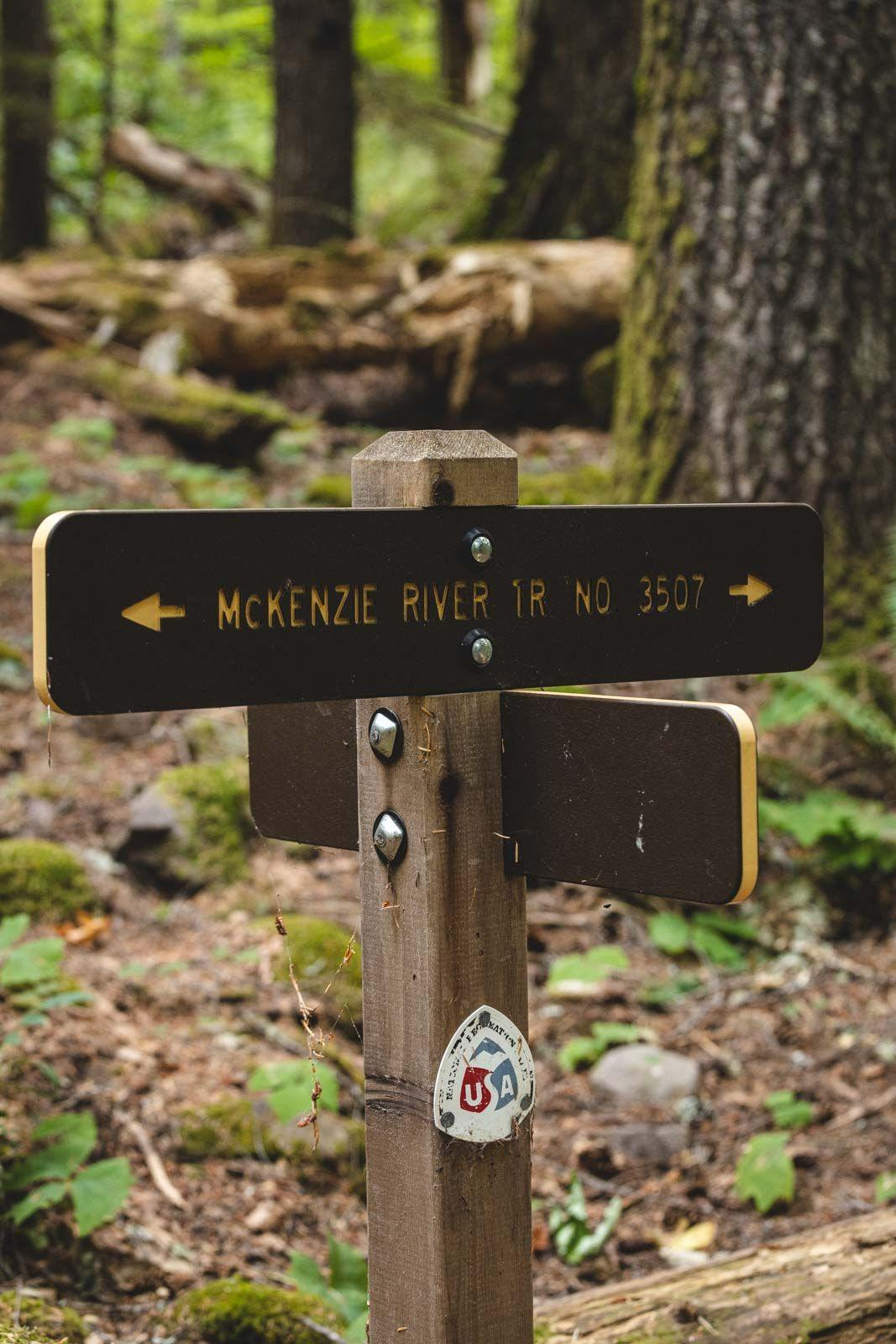 The McKenzie River Trail direction sign in forest