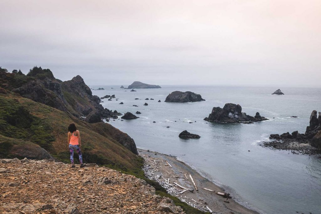 Person standing on cliff and looking out to the ocean and rocky islands in Samuel H Boardman, one of the Oregon Coast State Parks