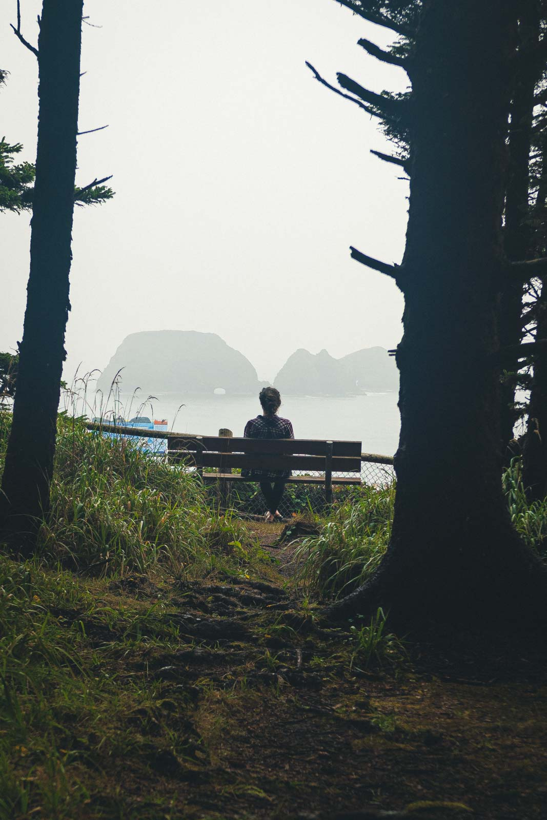 Person sitting on bench with trees looking out at ocean view near Cape Meares Oregon Lighthouse