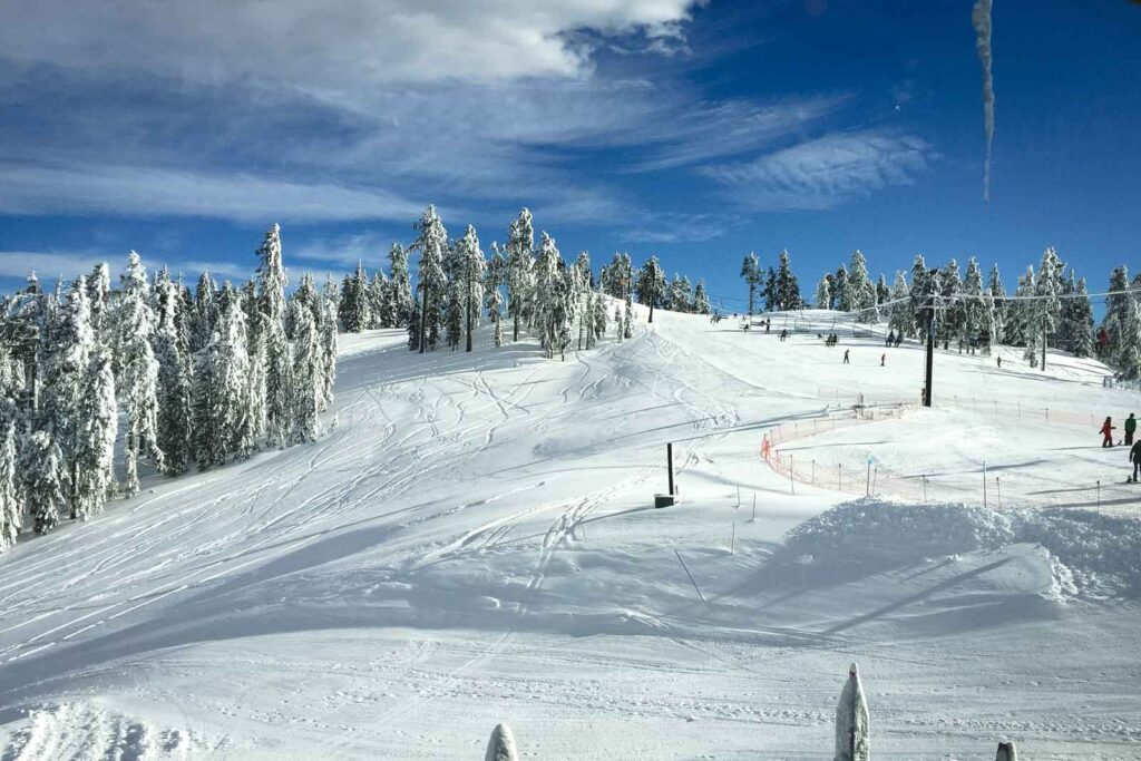 Snow covered mountain with trees at Mount Ashland Ski Resort in Oregon