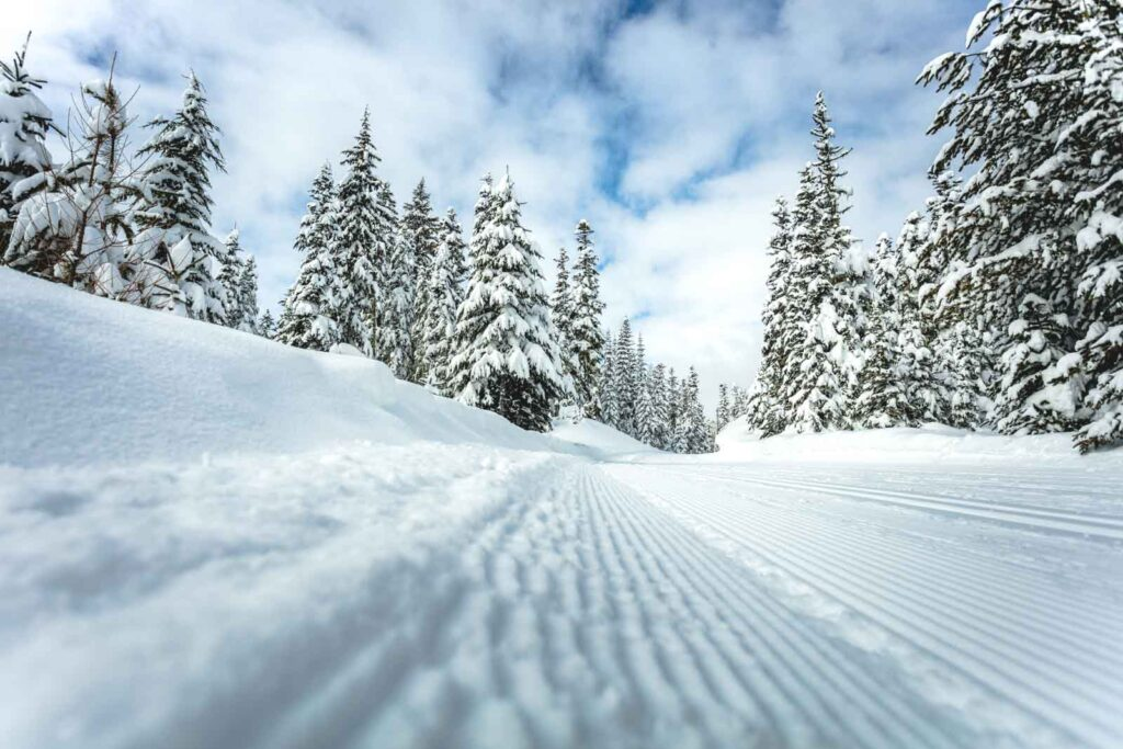 Ski tracks in snow and snow covered trees at Warner Canyon Ski Area in Oregon
