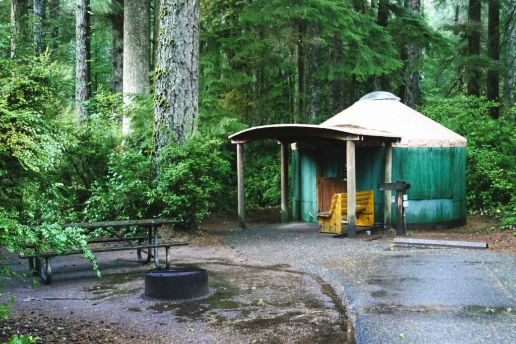 Yurt in forest, one of the yurt rentals on the Oregon Coast at Jessie M. Honeyman State Memorial Park