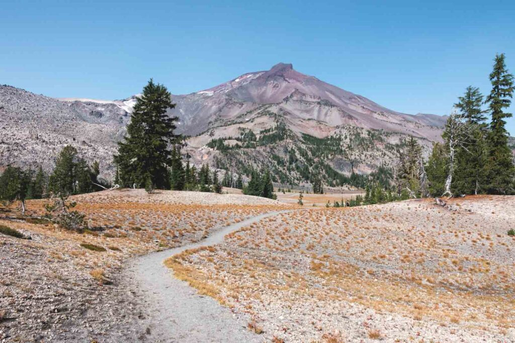 View of South Sister mountain and the trail to Green Lakes